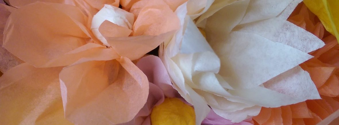 Tissue paper flowers kit what the craft tissue paper flowers kit mightylinksfo Image collections