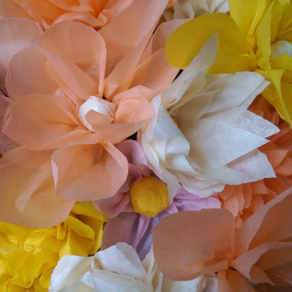 Tissue Paper Flowers Kit What The Craft